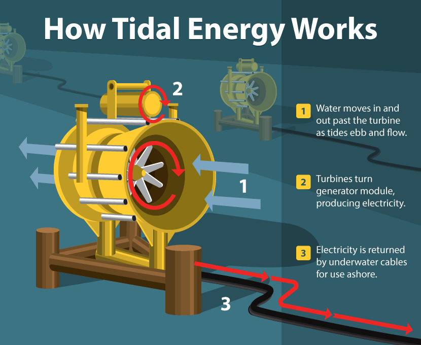 tidal energy: generation, working, advantages & disadvantages | tidal  barrage system | electrical academia
