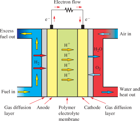 Operation of the Direct Methanol Fuel Cell (DMFC)