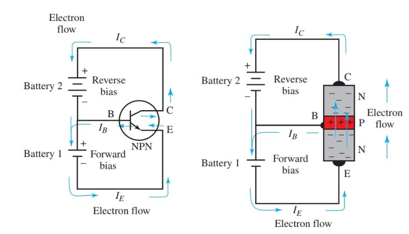 Forward and reverse bias in an NPN transistor amplifier circuit.