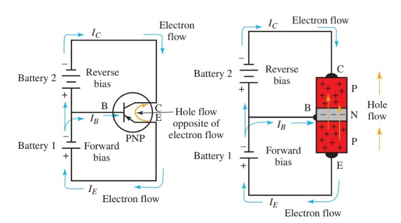 Forward and reverse bias in a PNP transistor amplifier circuit.