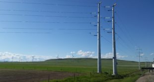 Transmission Lines Effects