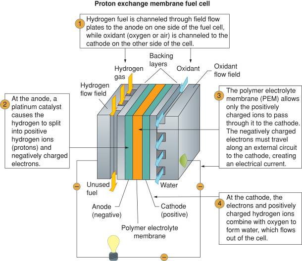 PEM fuel cell structure and operation.