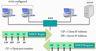 DNS and DHCP Explained