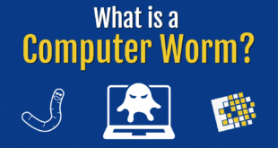 What Is A Computer Worm, And How Does It Work?