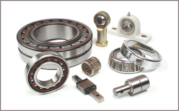 Electric Motor Bearing types