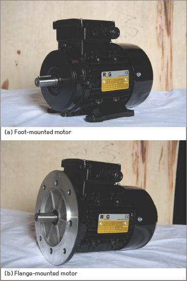 Types of electric motor mount diagram