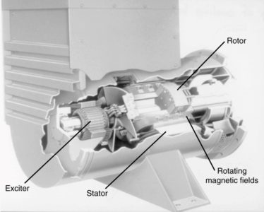Cutaway view of a synchronous machine.
