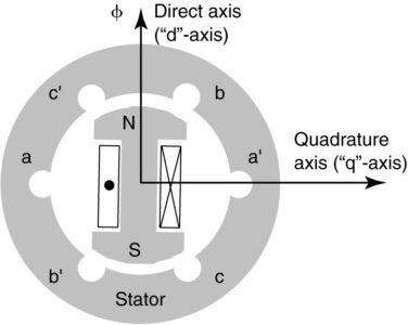 Cross section of a salient-pole synchronous generator