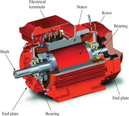 Cutaway View of an Induction Generator