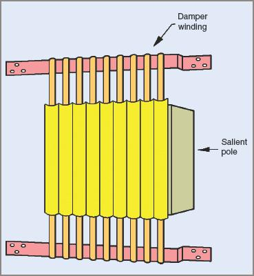 Salient pole with amortisseur windings in synchronous motor